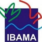 Gabarito Oficial do Concurso do IBAMA 2012 (CESPE)
