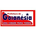 Gabarito Oficial Concurso Prefeitura de Goianésia do Pará (PA) 2012 (Coned)