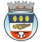 Gabarito Oficial Concurso Prefeitura de Medeiros Neto BA 2012 (Neto Ágora)